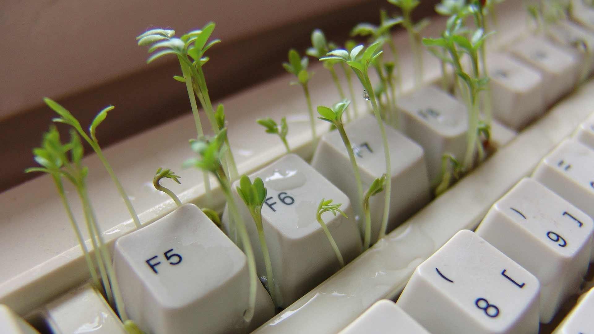 Marketing online per le PMI - Raggiungi il tuo target sul web