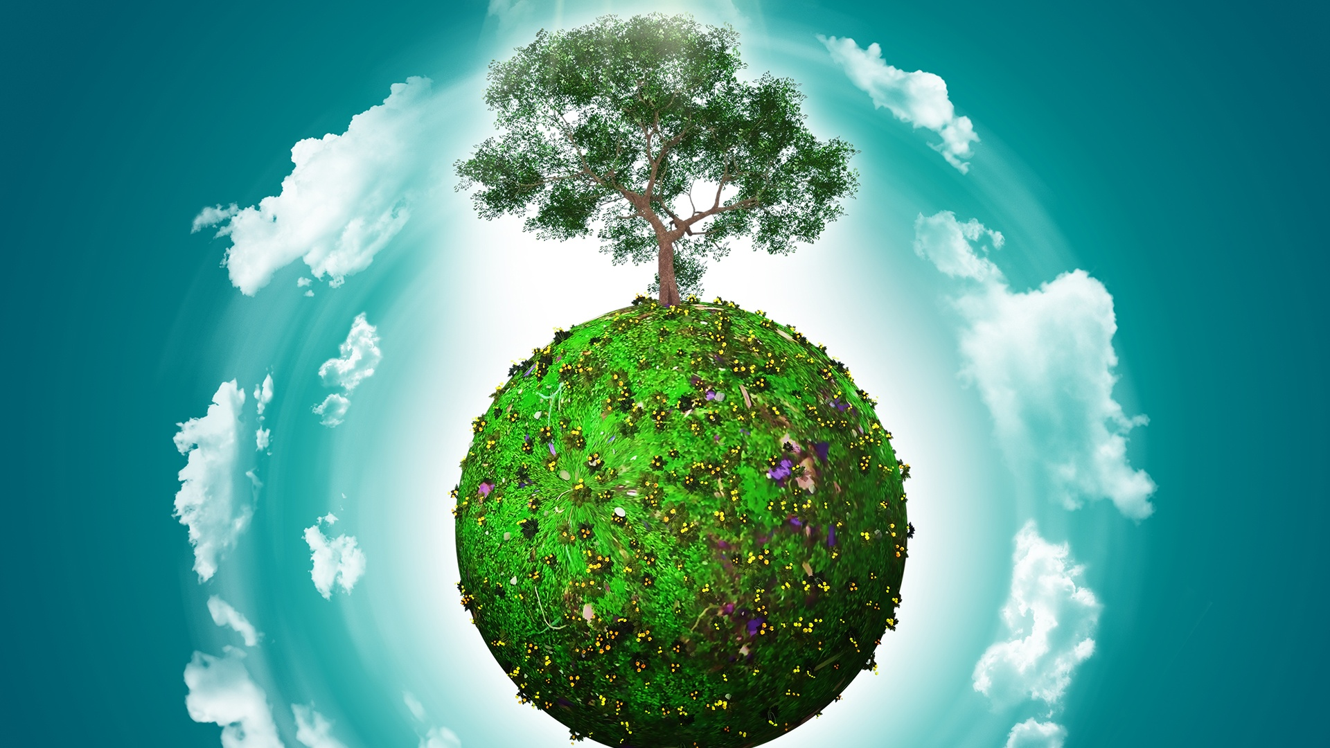 ERP Cloud   Save the planet!