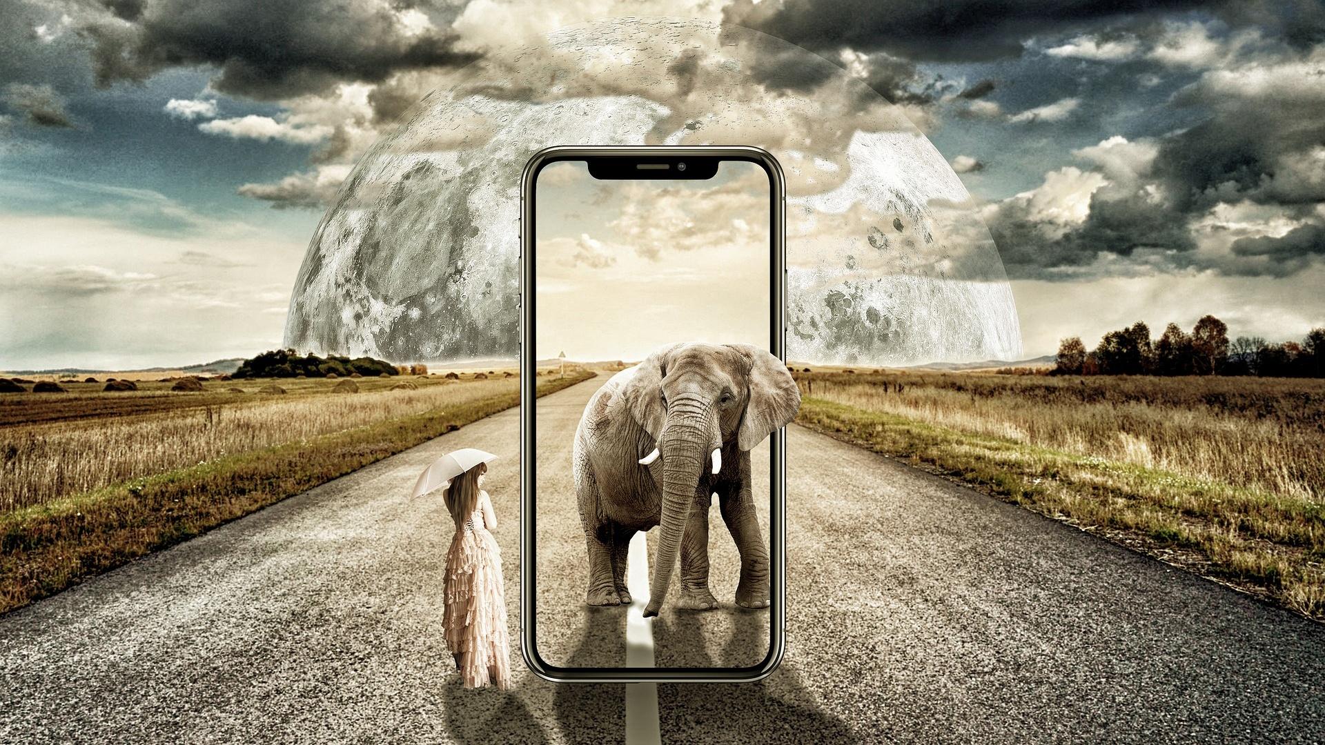 Introduce modern technology platforms