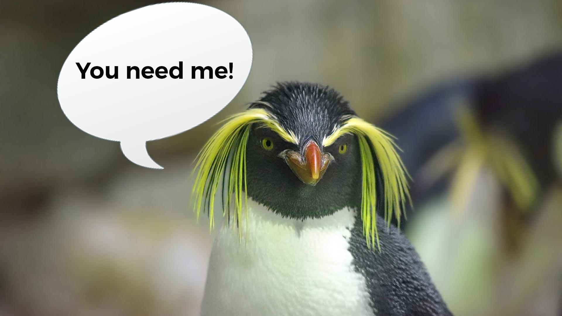 OpenStack è basato su sistemi operativi Linux