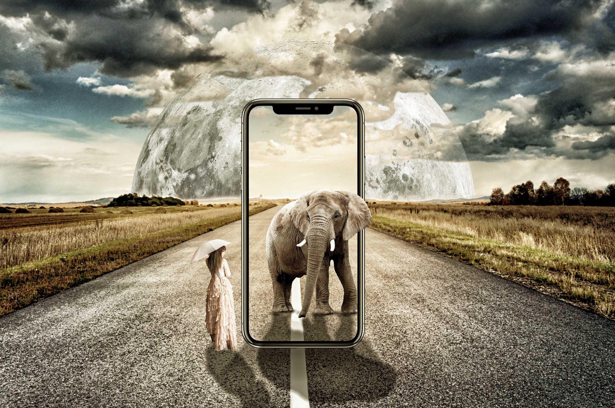 AMM | Introdurre piattaforme tecnologiche moderne