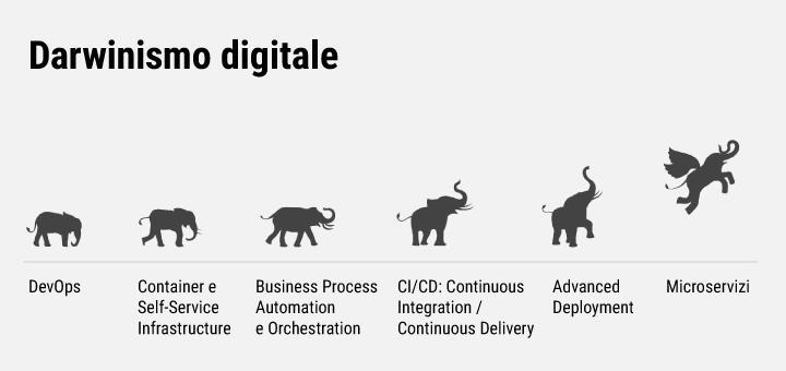 AMM e Darwinismo Digitale: scopri un nuovo modo di riorganizzare, snellire e velocizzare lo sviluppo applicativo