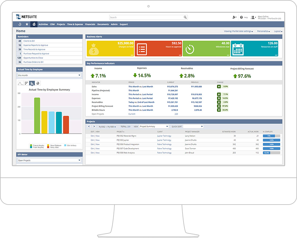 netsuite_analytics_desktop