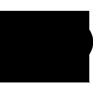 Linguaggio R